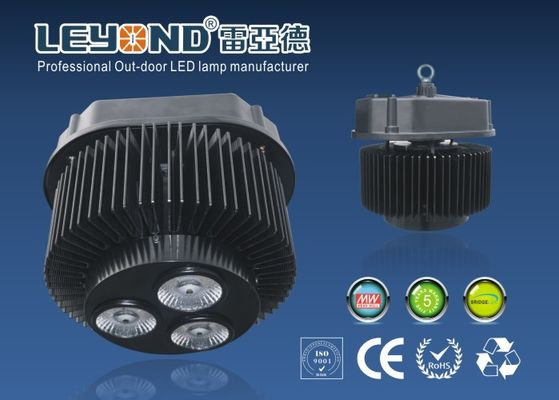 China Meanwell driver commercial LED high bay lighting for Pathway  / Park supplier