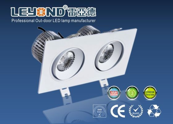 China Patent DIWL Lens Cree COB 36 watt LED DownLight for museum / home lighting supplier