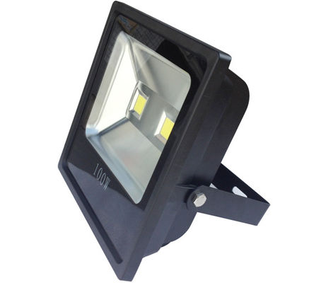 China COB Slim Line Die Casting Waterproof LED Flood Lights Pure White 100w High Power supplier
