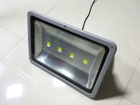 China Ultra bright Led flood light 250w robust housing with Bridgelux chips& driver supplier