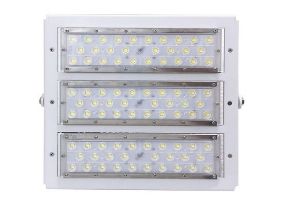 China RGB Outdoor LED Flood Lights Meanwell Driver Lumileds 5050 IP66 100 Watt TBD supplier