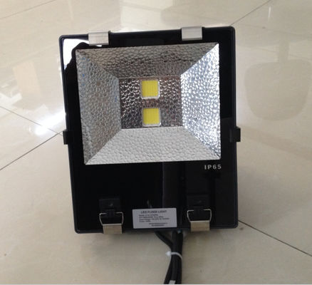 China Tunnel warm white IP65 LED flood light AC100 V - 240V For Garden supplier
